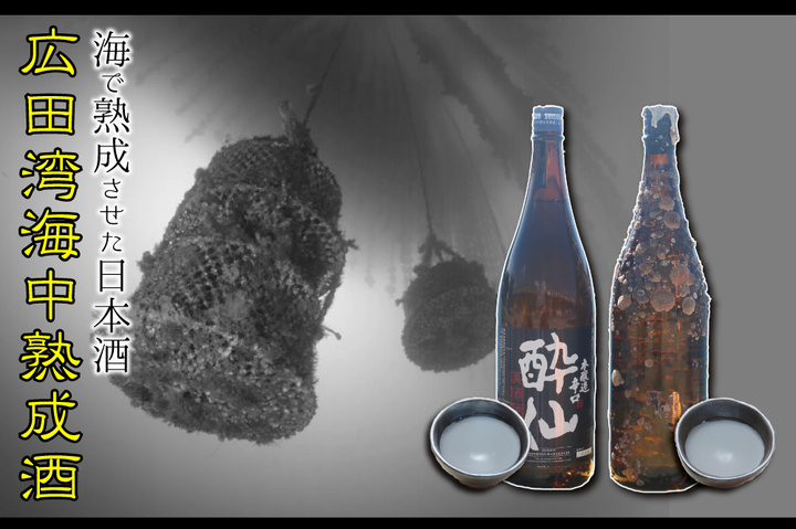 広田湾海中熟成酒が初登場!!