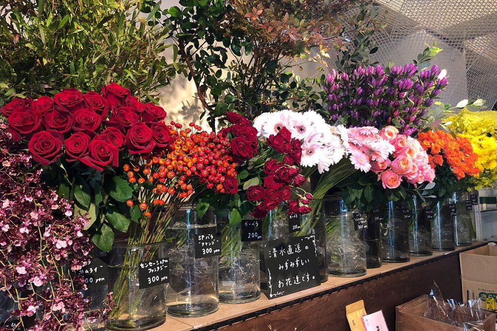 静岡県の清水から直送されたお花