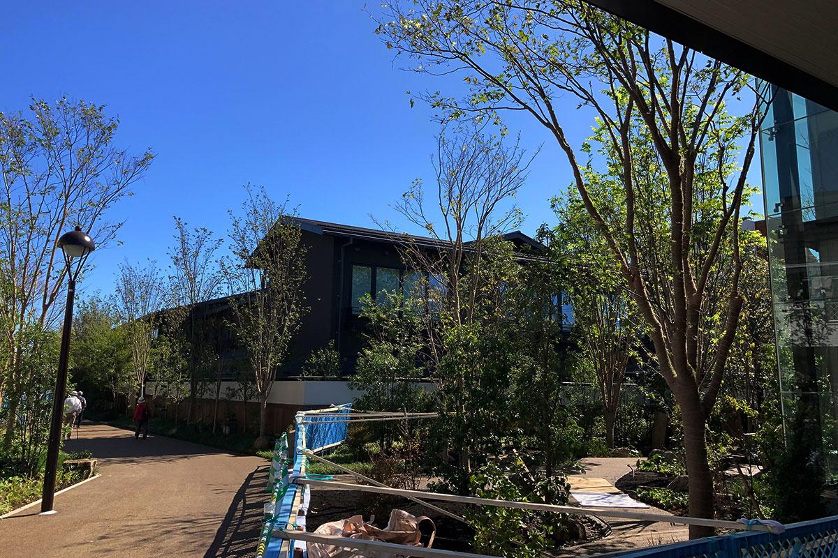 駐輪場を抜けると、温泉旅館「由縁別邸 代田」の建物が見えてきます。手前には緑あふれる空間も整備中です