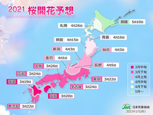 日本気象協会、「2021年桜開花予想(第1回)」リリースより