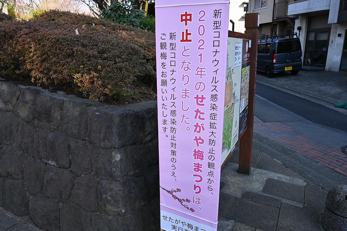 羽根木公園 2021.2.11
